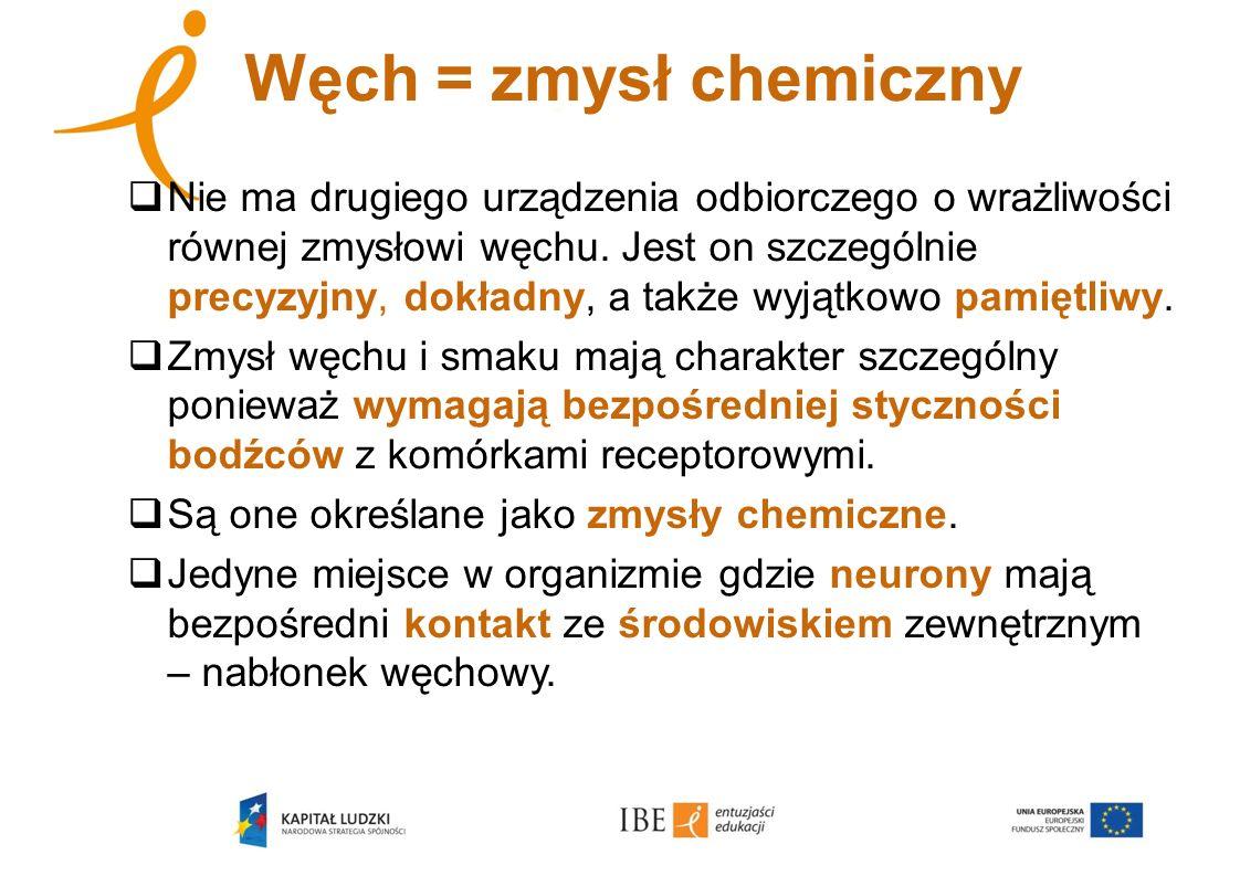 Węch = zmysł chemiczny Nie ma drugiego urządzenia odbiorczego o wrażliwości równej zmysłowi węchu. Jest on szczególnie precyzyjny, dokładny, a także w