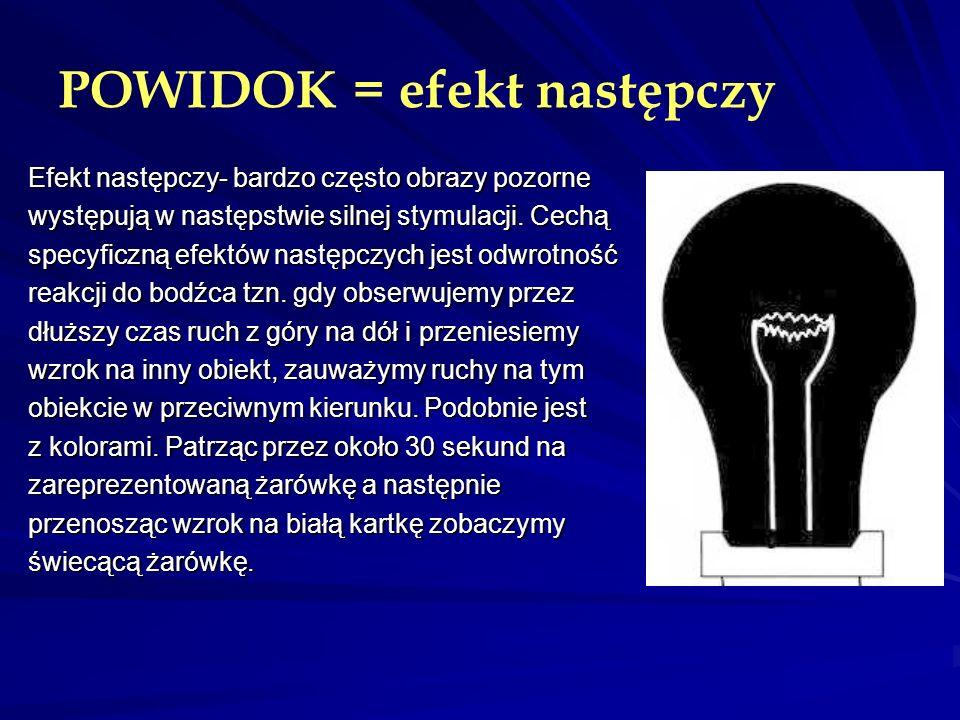 POWIDOK = efekt następczy Efekt następczy- bardzo często obrazy pozorne występują w następstwie silnej stymulacji. Cechą specyficzną efektów następczy