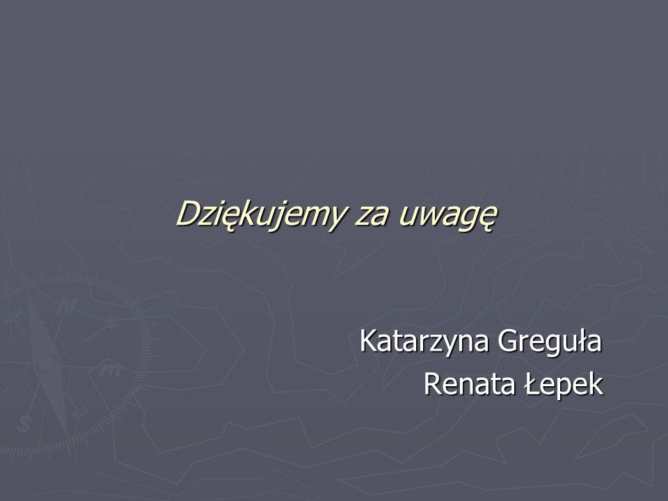 Dziękujemy za uwagę Katarzyna Greguła Renata Łepek
