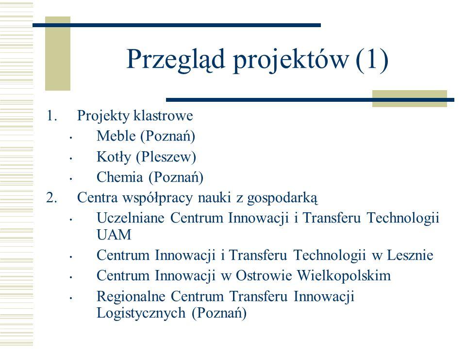 Przegląd projektów (1) 1.Projekty klastrowe Meble (Poznań) Kotły (Pleszew) Chemia (Poznań) 2. Centra współpracy nauki z gospodarką Uczelniane Centrum