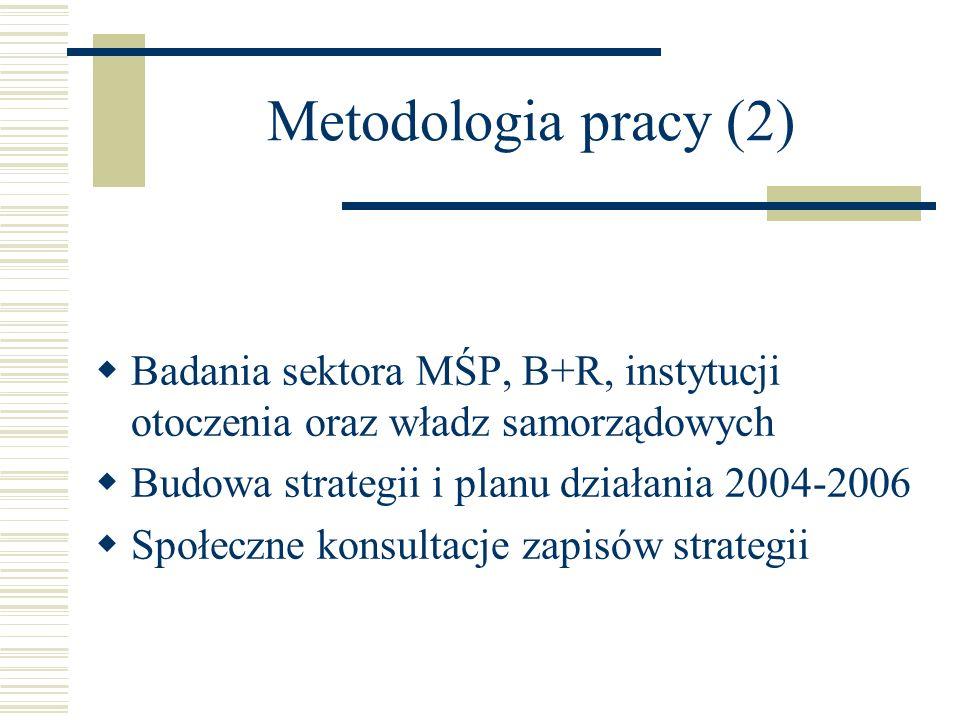 Metodologia pracy (2) Badania sektora MŚP, B+R, instytucji otoczenia oraz władz samorządowych Budowa strategii i planu działania 2004-2006 Społeczne k