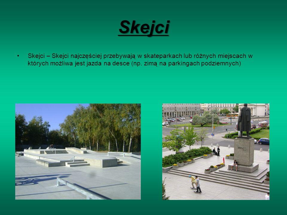 Skejci Skejci – Skejci najczęściej przebywają w skateparkach lub różnych miejscach w których możliwa jest jazda na desce (np.