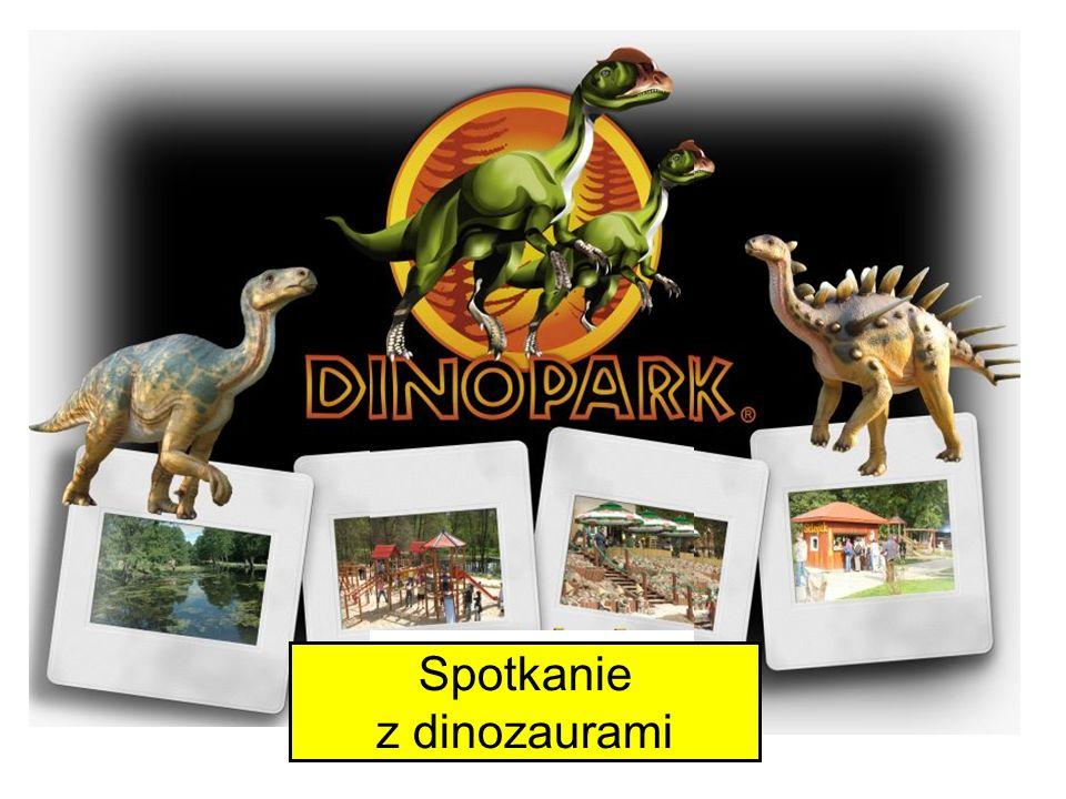 Zdjęcie Spotkanie z dinozaurami