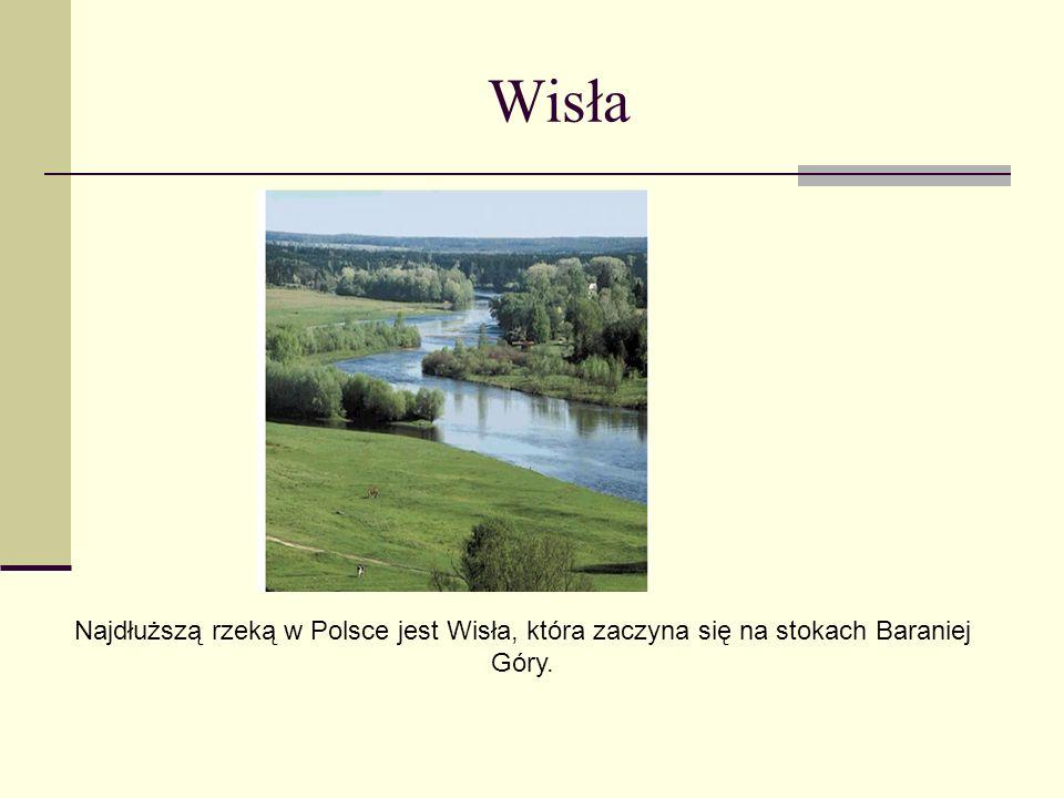 Wisła Najdłuższą rzeką w Polsce jest Wisła, która zaczyna się na stokach Baraniej Góry.