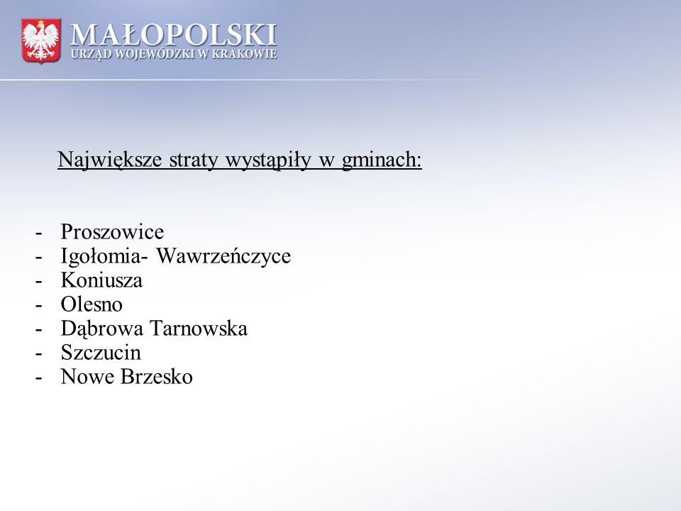 Największe straty wystąpiły w gminach: -Proszowice -Igołomia- Wawrzeńczyce -Koniusza -Olesno -Dąbrowa Tarnowska -Szczucin -Nowe Brzesko