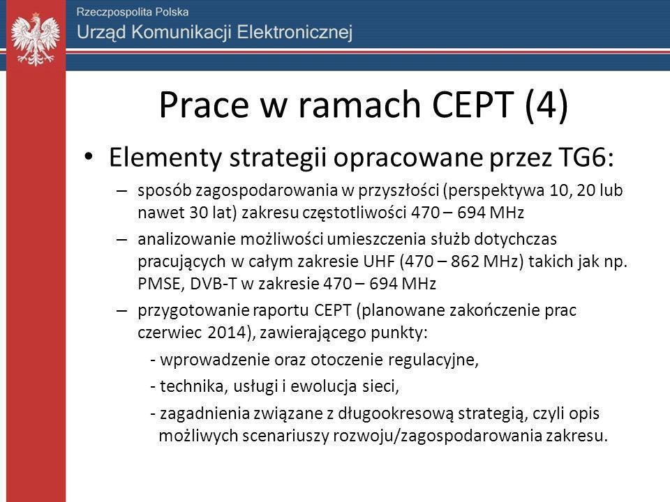 Prace w ramach CEPT (4) Elementy strategii opracowane przez TG6: – sposób zagospodarowania w przyszłości (perspektywa 10, 20 lub nawet 30 lat) zakresu