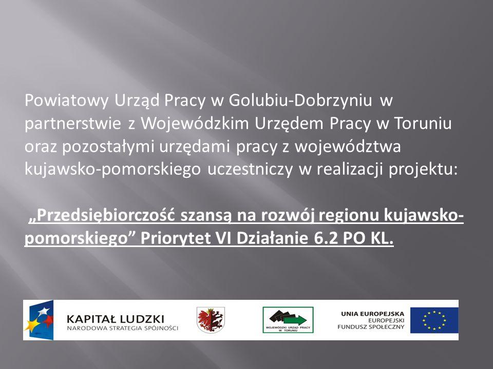 Powiatowy Urząd Pracy w Golubiu-Dobrzyniu w partnerstwie z Wojewódzkim Urzędem Pracy w Toruniu oraz pozostałymi urzędami pracy z województwa kujawsko-