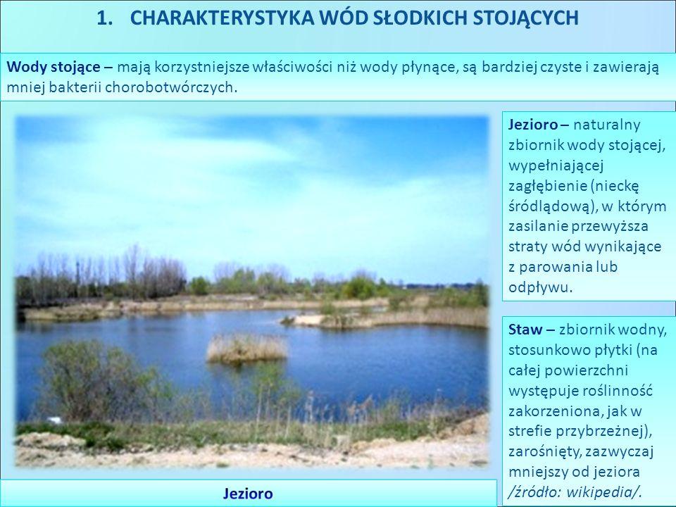 1.CHARAKTERYSTYKA WÓD SŁODKICH STOJĄCYCH Wody stojące – mają korzystniejsze właściwości niż wody płynące, są bardziej czyste i zawierają mniej bakteri