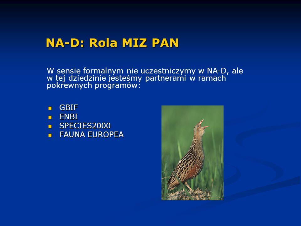 GBIF GBIF ENBI ENBI SPECIES2000 SPECIES2000 FAUNA EUROPEA FAUNA EUROPEA NA-D: Rola MIZ PAN W sensie formalnym nie uczestniczymy w NA-D, ale w tej dziedzinie jesteśmy partnerami w ramach pokrewnych programów: