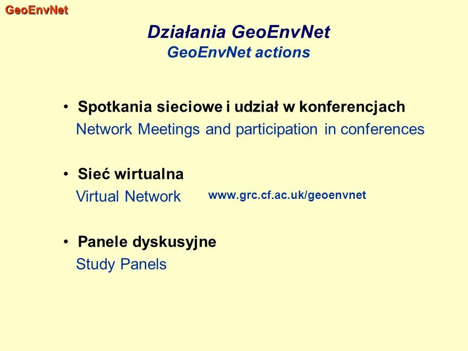 Spotkania sieciowe i udział w konferencjach Network Meetings and participation in conferences Sieć wirtualna Virtual Network Panele dyskusyjne Study P