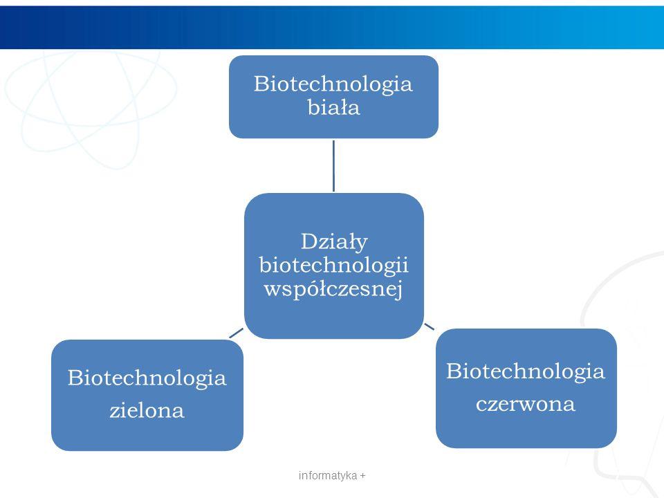 Działy biotechnologii współczesnej Biotechnologia biała Biotechnologia czerwona Biotechnologia zielona 7 informatyka +