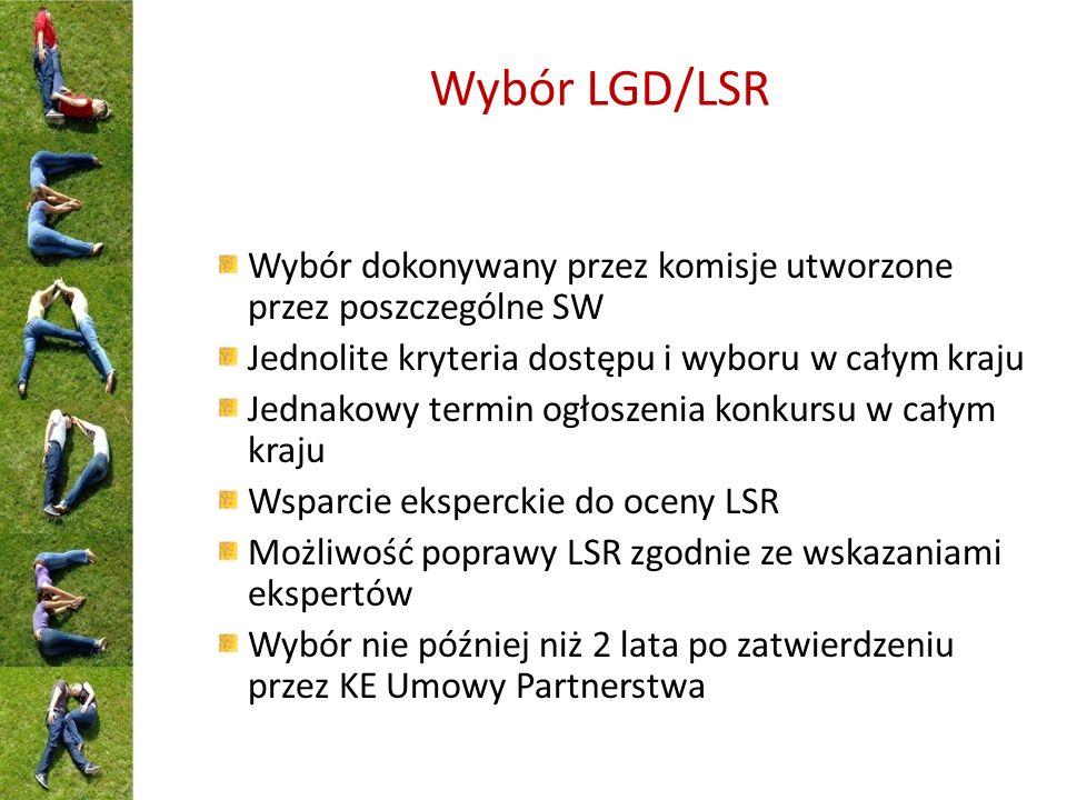 Wybór LGD/LSR Wybór dokonywany przez komisje utworzone przez poszczególne SW Jednolite kryteria dostępu i wyboru w całym kraju Jednakowy termin ogłoszenia konkursu w całym kraju Wsparcie eksperckie do oceny LSR Możliwość poprawy LSR zgodnie ze wskazaniami ekspertów Wybór nie później niż 2 lata po zatwierdzeniu przez KE Umowy Partnerstwa