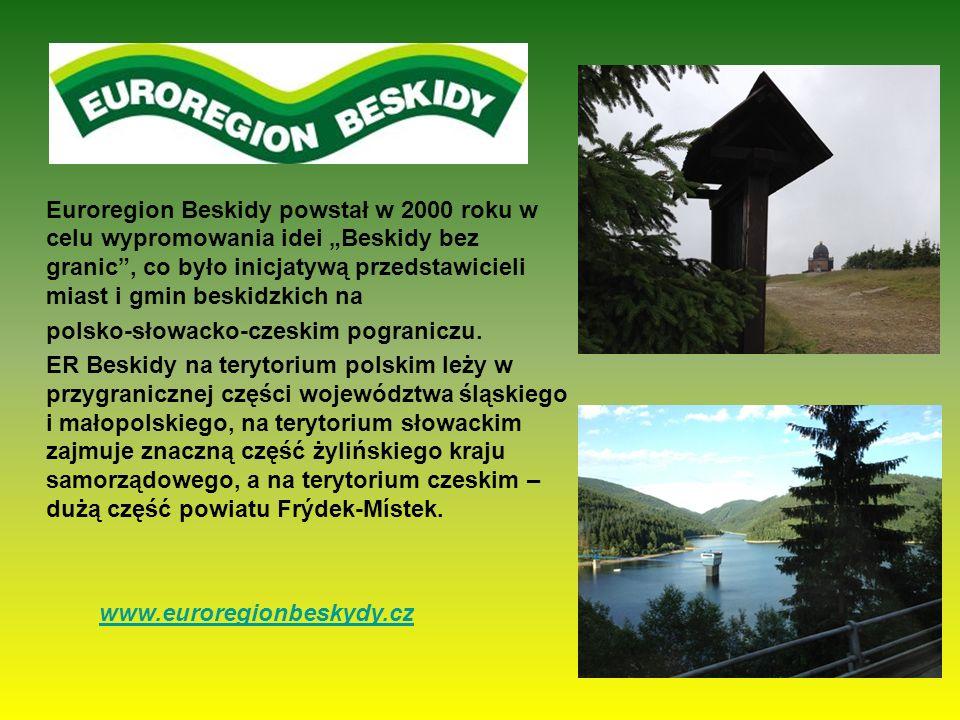 Euroregion Beskidy powstał w 2000 roku w celu wypromowania idei Beskidy bez granic, co było inicjatywą przedstawicieli miast i gmin beskidzkich na pol