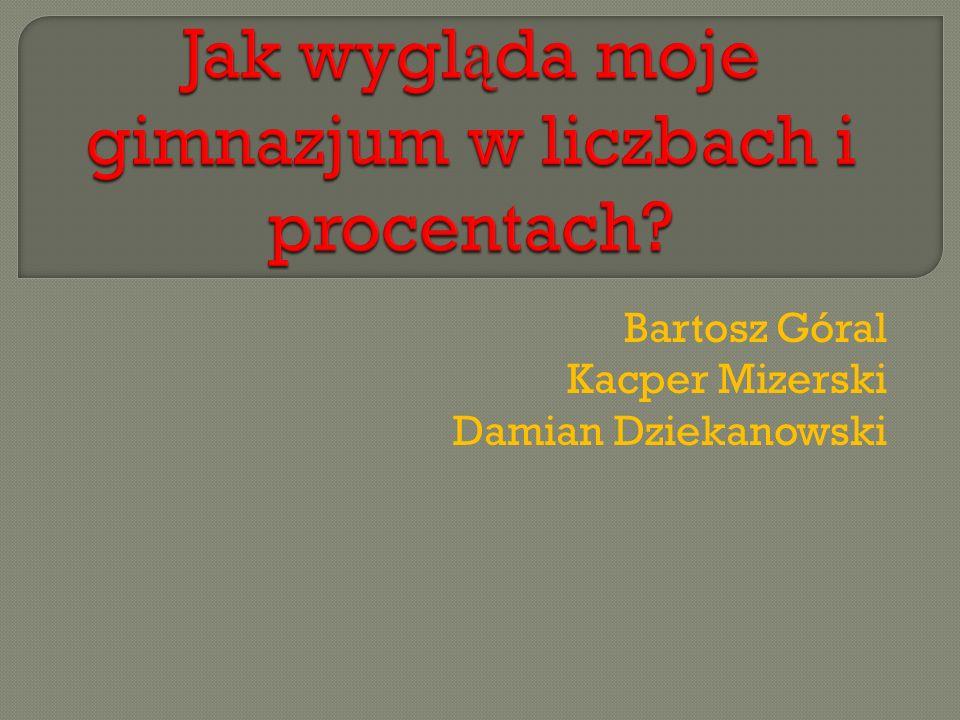 Bartosz Góral Kacper Mizerski Damian Dziekanowski