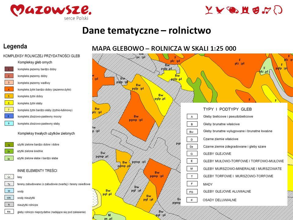 Dane tematyczne – rolnictwo MAPA GLEBOWO – ROLNICZA W SKALI 1:25 000
