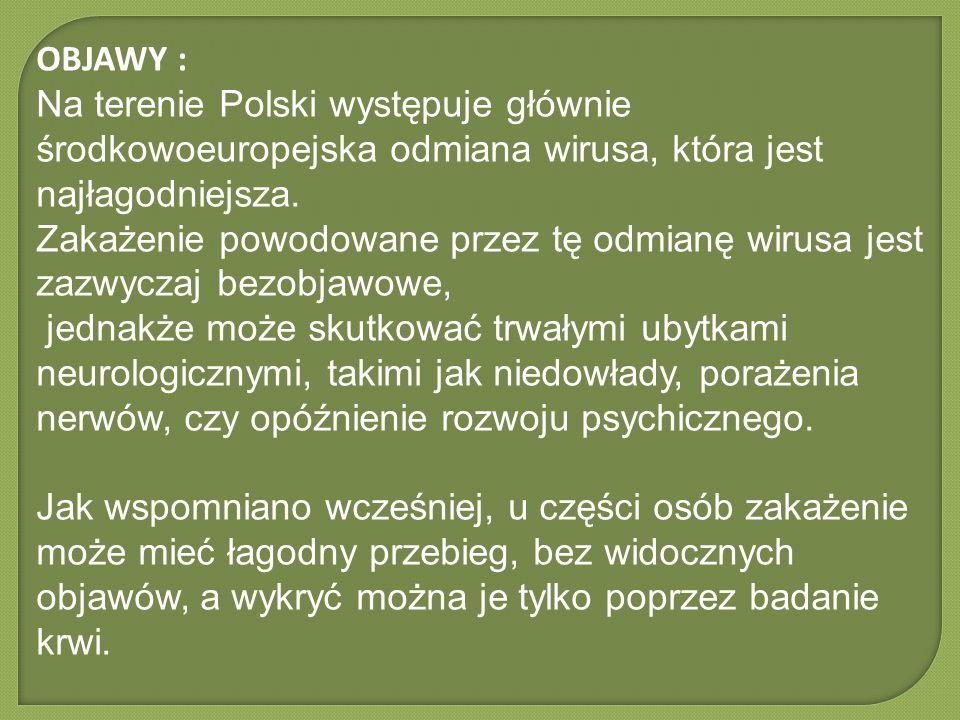 OBJAWY : Na terenie Polski występuje głównie środkowoeuropejska odmiana wirusa, która jest najłagodniejsza. Zakażenie powodowane przez tę odmianę wiru