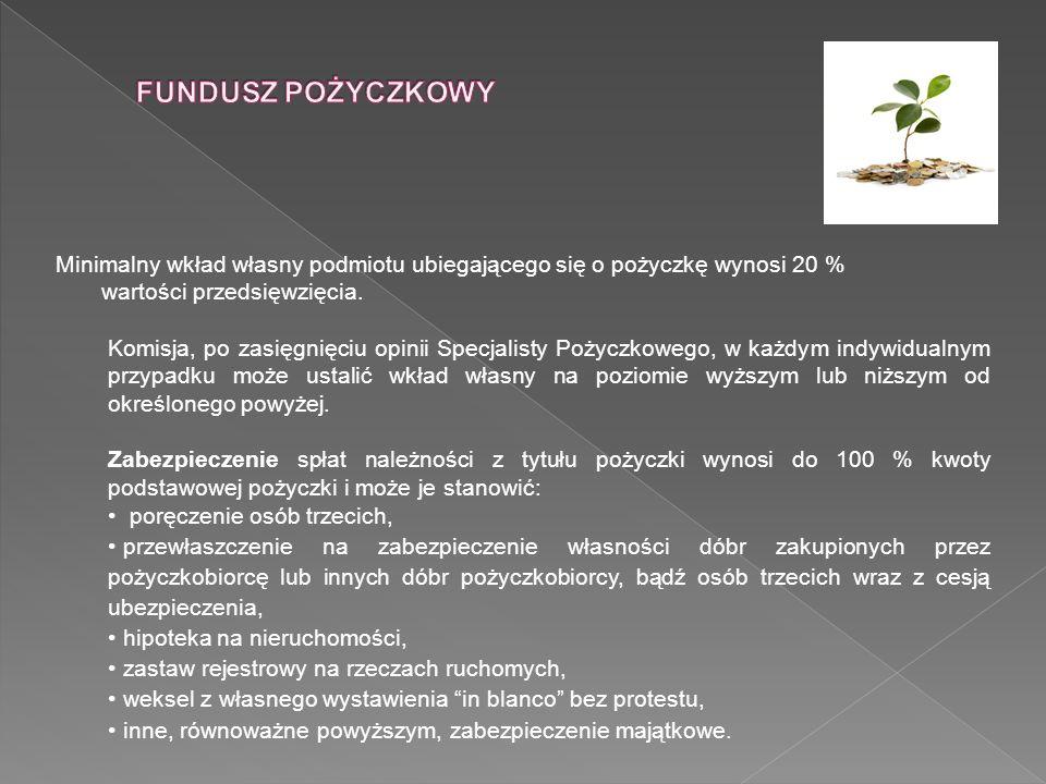 Odbiorcy udzielanych pożyczek 1.