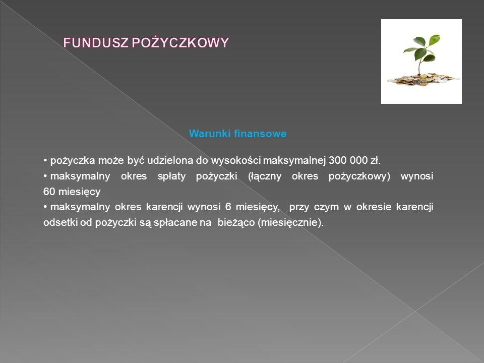 Warunki finansowe pożyczka może być udzielona do wysokości maksymalnej 300 000 zł. maksymalny okres spłaty pożyczki (łączny okres pożyczkowy) wynosi 6