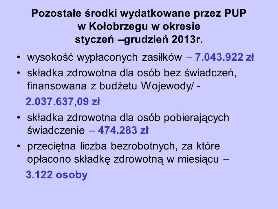 Pozostałe środki wydatkowane przez PUP w Kołobrzegu w okresie styczeń –grudzień 2013r.
