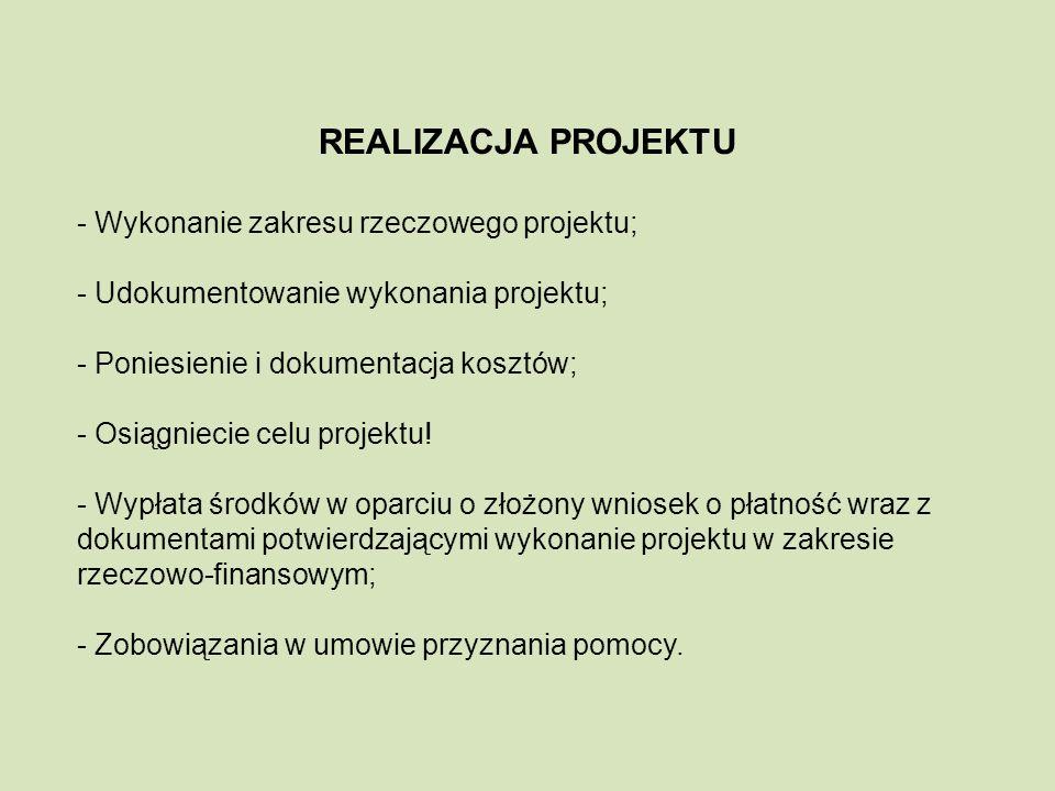 REALIZACJA PROJEKTU - Wykonanie zakresu rzeczowego projektu; - Udokumentowanie wykonania projektu; - Poniesienie i dokumentacja kosztów; - Osiągniecie celu projektu.