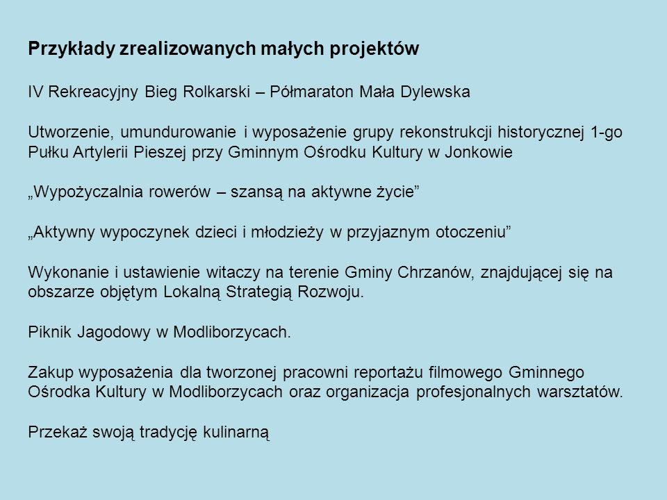 Przykłady zrealizowanych małych projektów IV Rekreacyjny Bieg Rolkarski – Półmaraton Mała Dylewska Utworzenie, umundurowanie i wyposażenie grupy rekon
