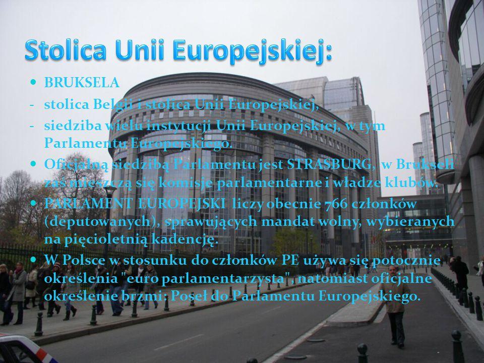 BRUKSELA - stolica Belgii i stolica Unii Europejskiej, - siedziba wielu instytucji Unii Europejskiej, w tym Parlamentu Europejskiego.