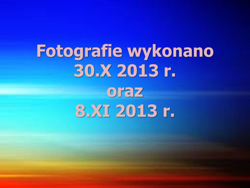 Fotografie wykonano 30.X 2013 r. oraz 8.XI 2013 r.
