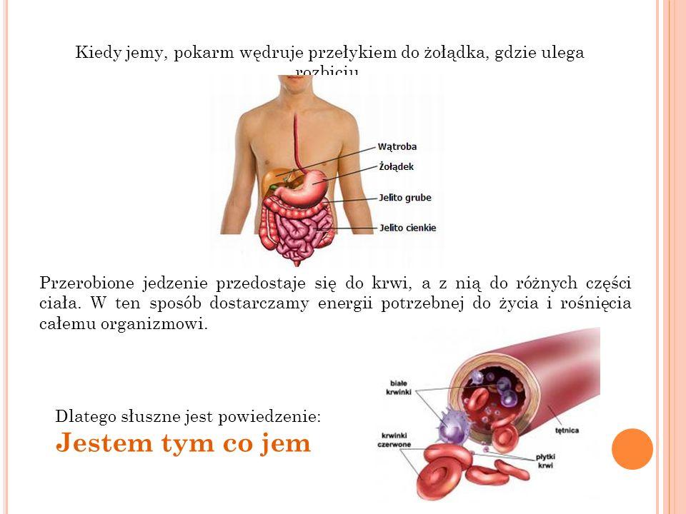 Kiedy jemy, pokarm wędruje przełykiem do żołądka, gdzie ulega rozbiciu. Przerobione jedzenie przedostaje się do krwi, a z nią do różnych części ciała.