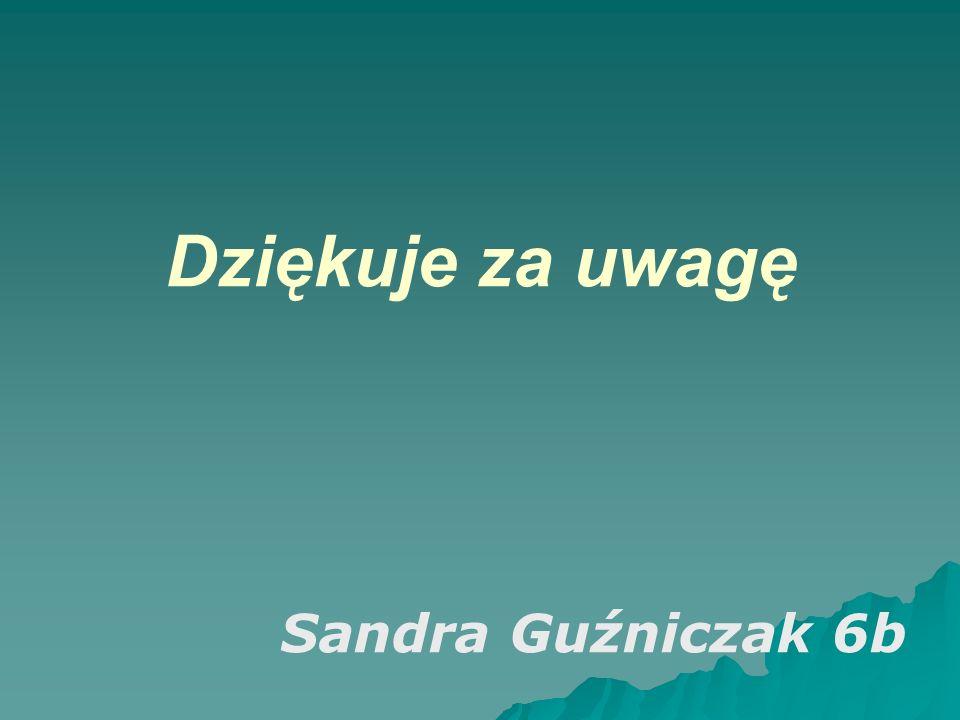 Dziękuje za uwagę Sandra Guźniczak 6b