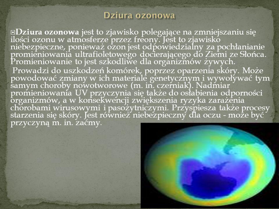 Dziura ozonowa jest to zjawisko polegające na zmniejszaniu się ilości ozonu w atmosferze przez freony. Jest to zjawisko niebezpieczne, ponieważ ozon j