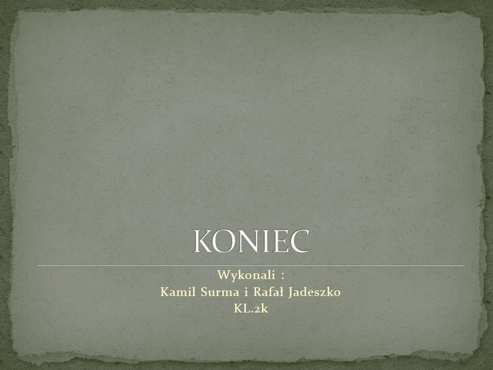 Wykonali : Kamil Surma i Rafał Jadeszko KL.2k
