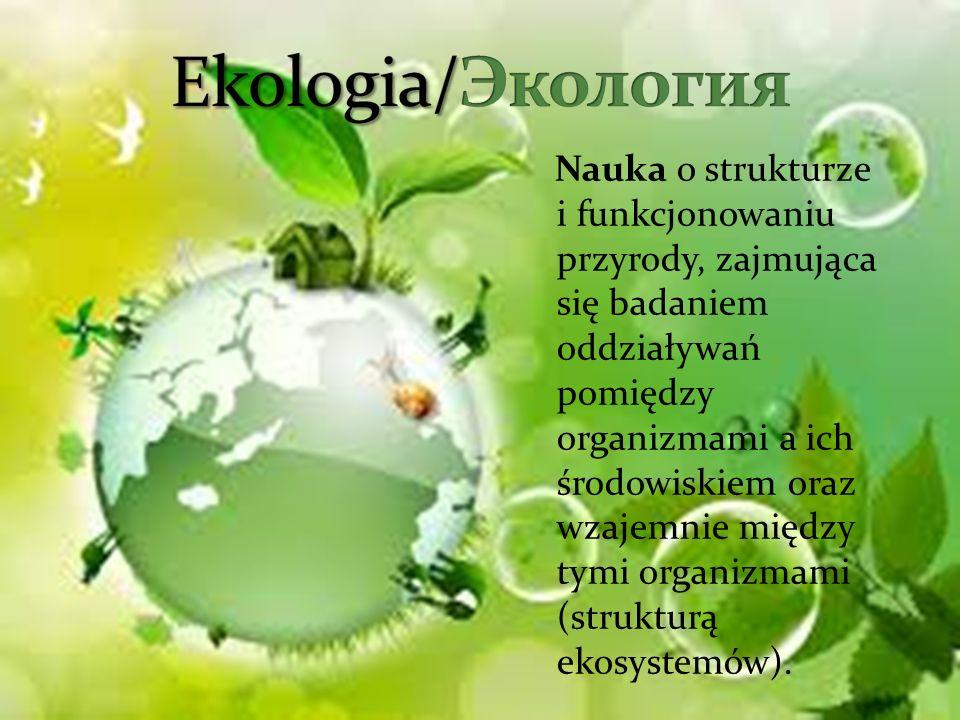 Nauka o strukturze i funkcjonowaniu przyrody, zajmująca się badaniem oddziaływań pomiędzy organizmami a ich środowiskiem oraz wzajemnie między tymi or