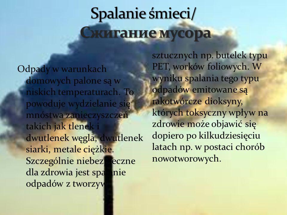 Odpady w warunkach domowych palone są w niskich temperaturach. To powoduje wydzielanie się mnóstwa zanieczyszczeń takich jak tlenek i dwutlenek węgla,