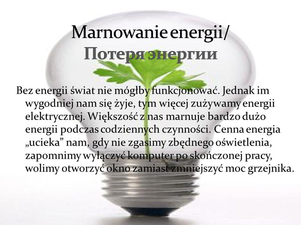 Bez energii świat nie mógłby funkcjonować. Jednak im wygodniej nam się żyje, tym więcej zużywamy energii elektrycznej. Większość z nas marnuje bardzo