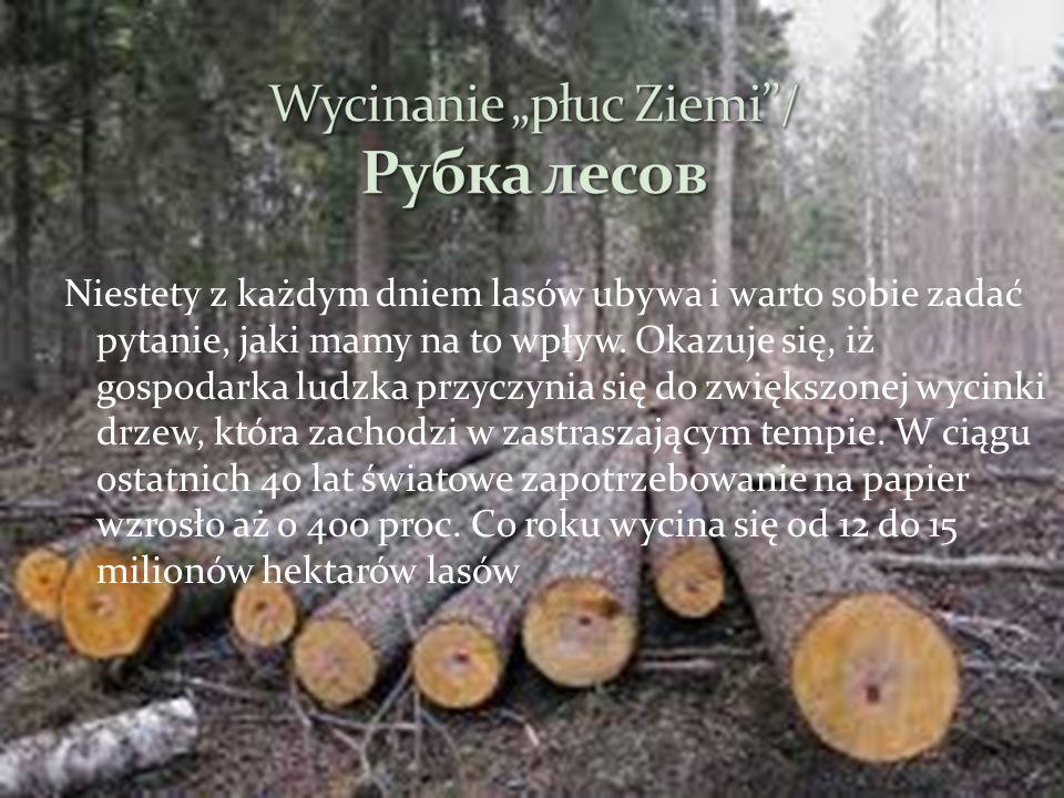 Niestety z każdym dniem lasów ubywa i warto sobie zadać pytanie, jaki mamy na to wpływ. Okazuje się, iż gospodarka ludzka przyczynia się do zwiększone