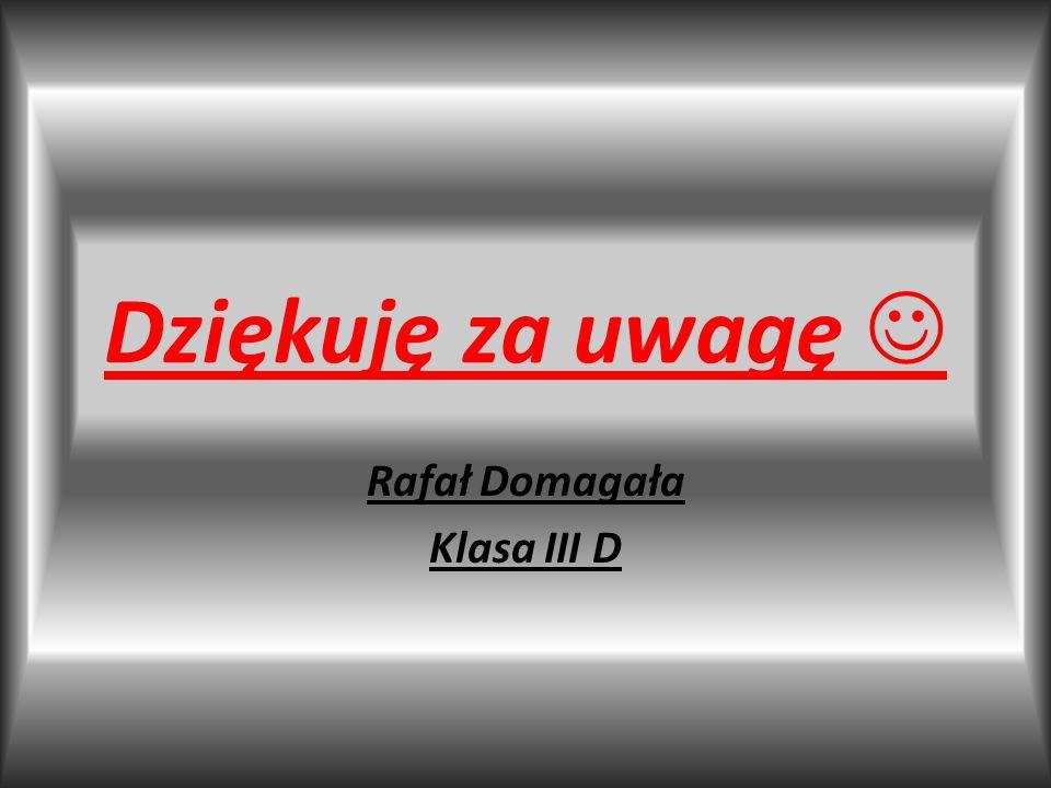 Dziękuję za uwagę Rafał Domagała Klasa III D