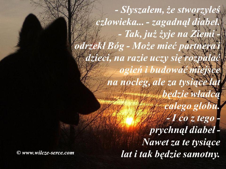 Pewnego razu Pan Bóg przechadzał się po rajskim ogrodzie. Nagle zza krzaka wyszedł diabeł. © www.wilcze-serce.com