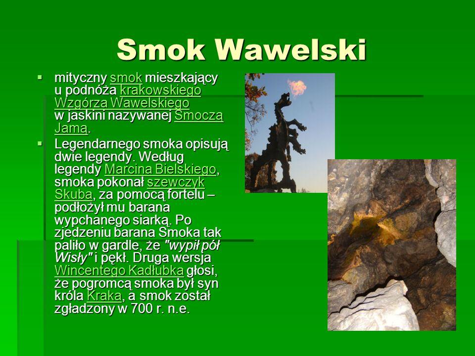 Smok Wawelski mityczny smok mieszkający u podnóża krakowskiego Wzgórza Wawelskiego w jaskini nazywanej Smoczą Jamą. mityczny smok mieszkający u podnóż