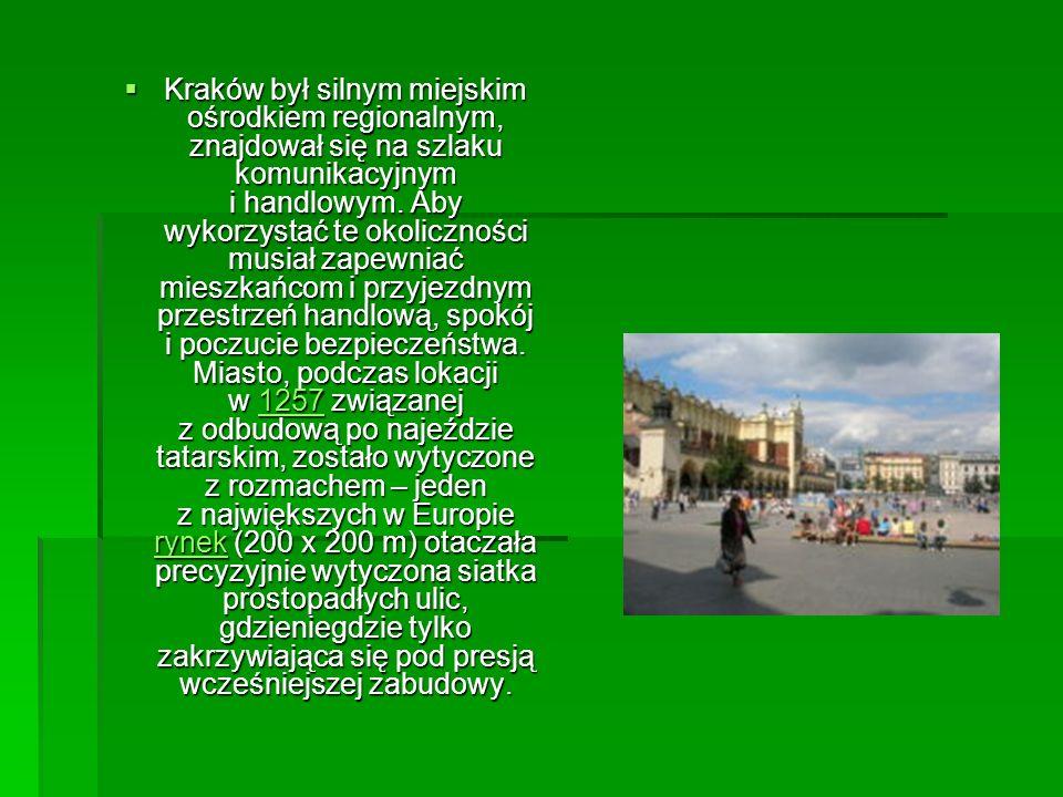 Kraków był silnym miejskim ośrodkiem regionalnym, znajdował się na szlaku komunikacyjnym i handlowym. Aby wykorzystać te okoliczności musiał zapewniać
