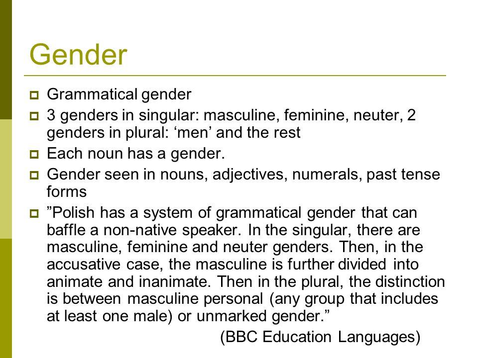 Gender Grammatical gender 3 genders in singular: masculine, feminine, neuter, 2 genders in plural: men and the rest Each noun has a gender. Gender see