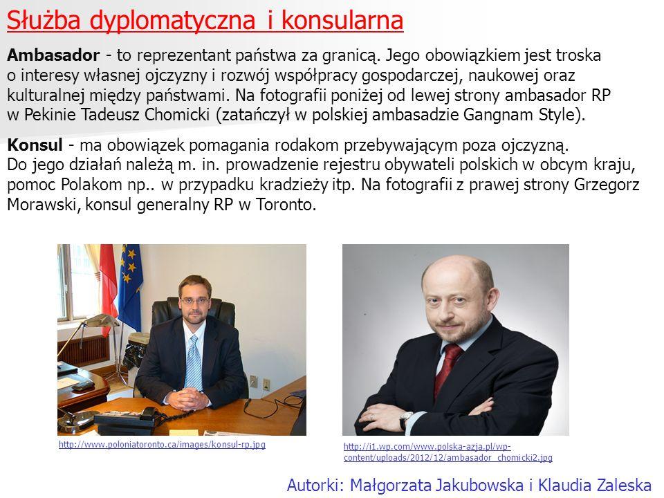 Służba dyplomatyczna i konsularna Ambasador - to reprezentant państwa za granicą. Jego obowiązkiem jest troska o interesy własnej ojczyzny i rozwój ws