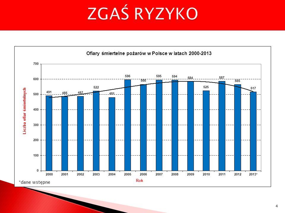 Realizacja zakupów wyposażenia w 2013 r.