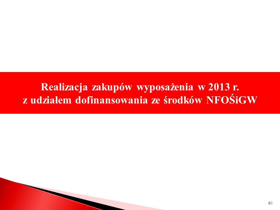Realizacja zakupów wyposażenia w 2013 r. współfinansowanych przez Unię Europejską w ramach Programu Operacyjnego Infrastruktura i Środowisko Realizacj