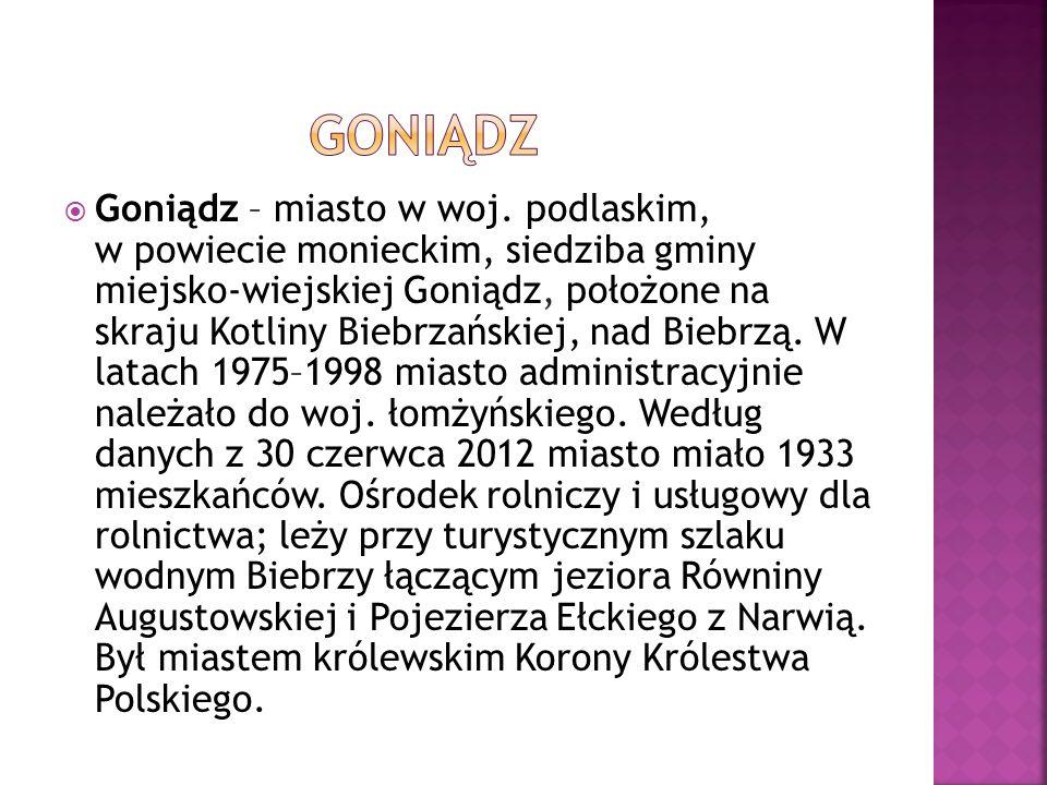 W XIV w.gród, przedmiot sporów mi ę dzy Mazowszem a Litw ą ; XIV/XV w.