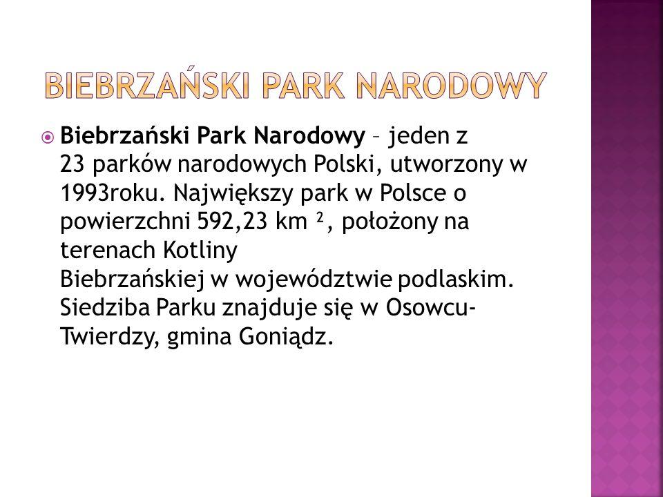 Biebrzański Park Narodowy – jeden z 23 parków narodowych Polski, utworzony w 1993roku.