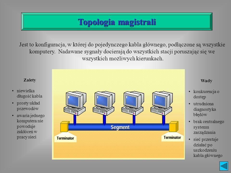 Jest to konfiguracja, w której do pojedynczego kabla głównego, podłączone są wszystkie komputery. Nadawane sygnały docierają do wszystkich stacji poru