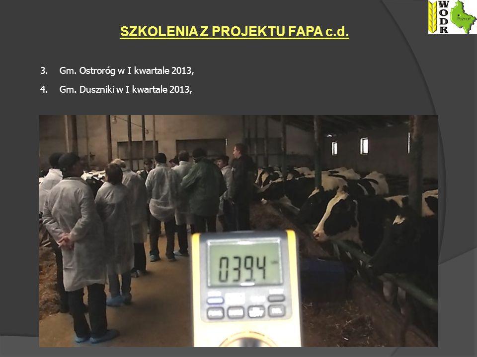 3.Gm. Ostroróg w I kwartale 2013, 4. Gm.