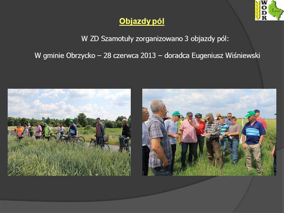 Objazdy pól W ZD Szamotuły zorganizowano 3 objazdy pól: W gminie Obrzycko – 28 czerwca 2013 – doradca Eugeniusz Wiśniewski