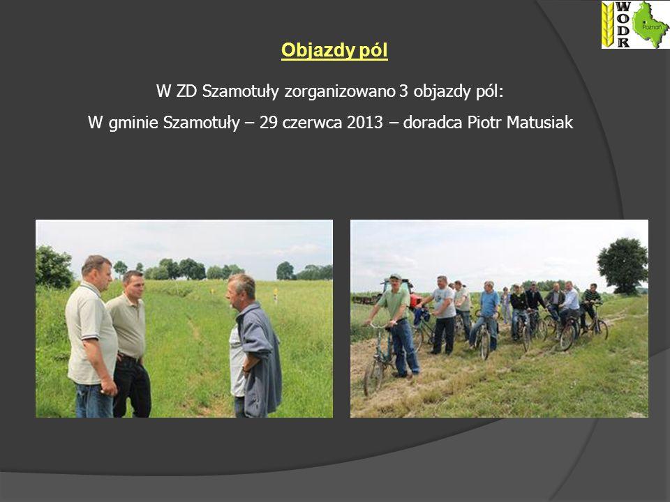 Objazdy pól W ZD Szamotuły zorganizowano 3 objazdy pól: W gminie Szamotuły – 29 czerwca 2013 – doradca Piotr Matusiak
