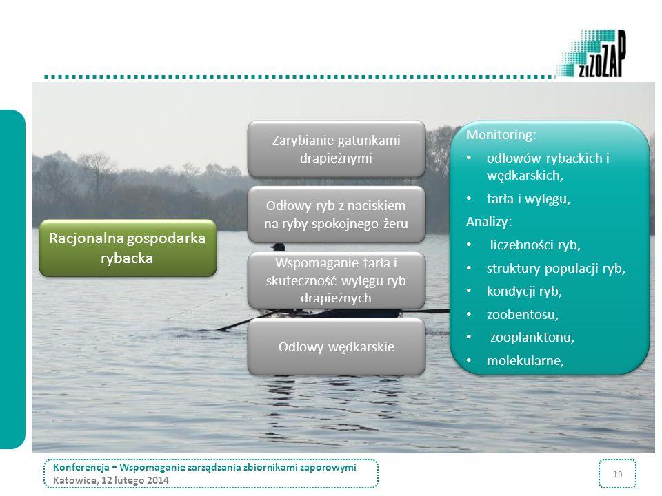 10 Odłowy wędkarskie Konferencja – Wspomaganie zarządzania zbiornikami zaporowymi Katowice, 12 lutego 2014 Zarybianie gatunkami drapieżnymi Wspomagani